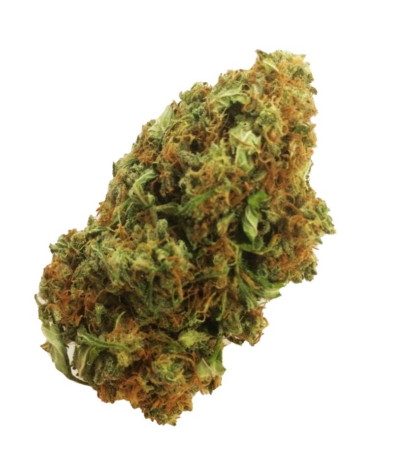Buy Mango Haze Weed Online